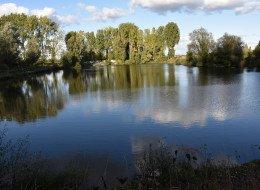 Aménagements des étangs du Pontceau