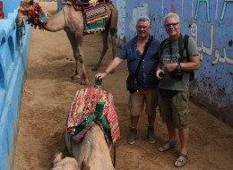 Voyage en Égypte IX